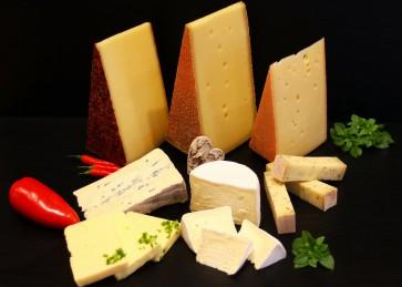 Käse Probier-Paket 1 kg würzig